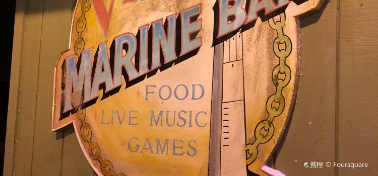 Villa Marine Bar1