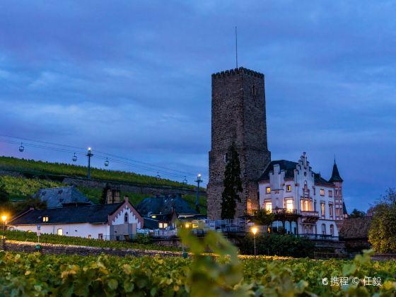 Rheingau Wine Museum Broemserburg Castle