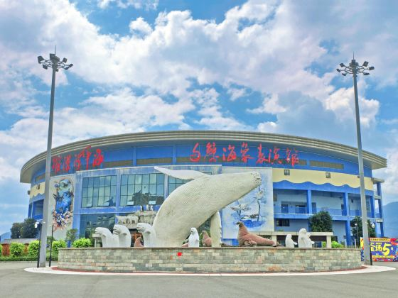 Luoyuan Bay Beluga Museum