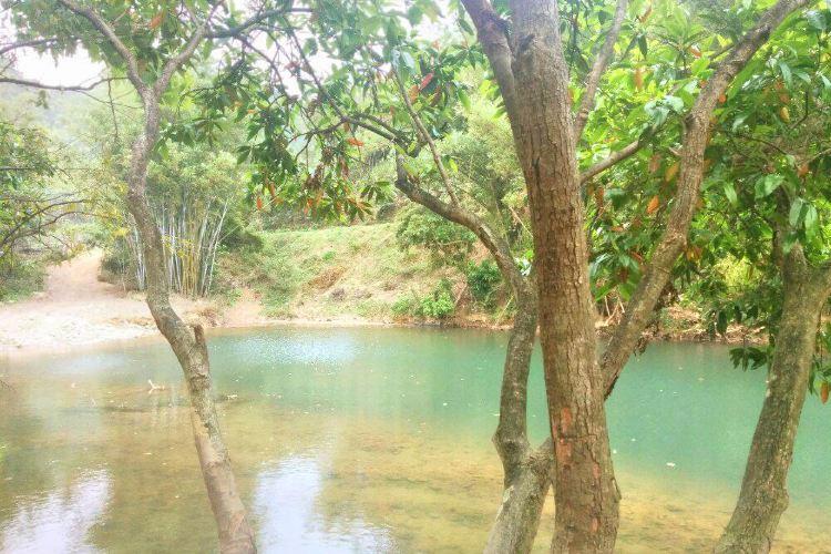 Taishan Fenghuangxia Xiaojiuzhai
