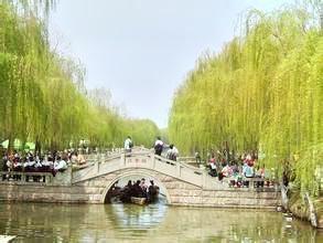 dan gui yuan