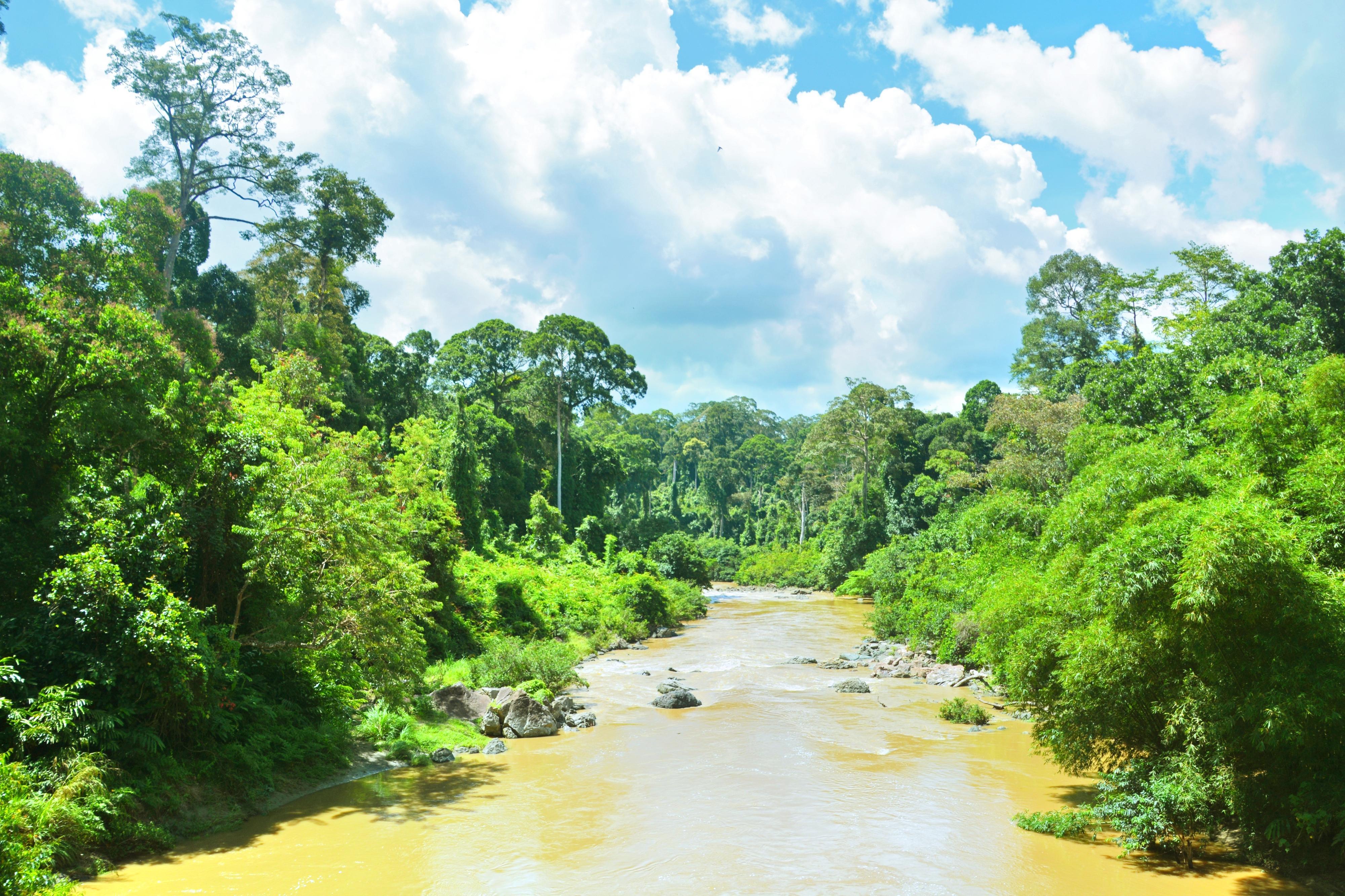 丹濃谷自然保護區
