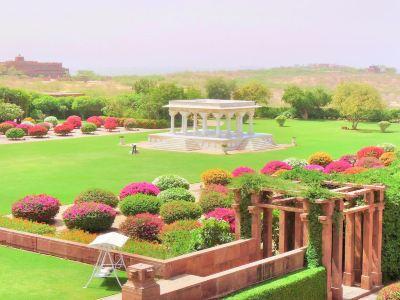 Umed Garden