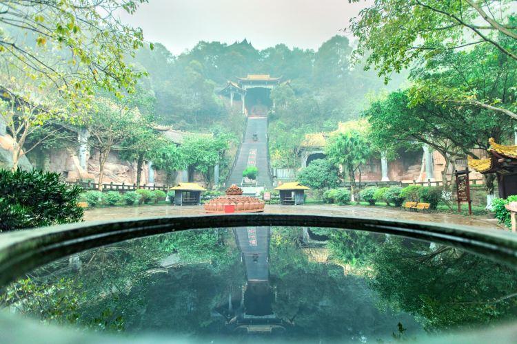 Oriental Buddha Capital