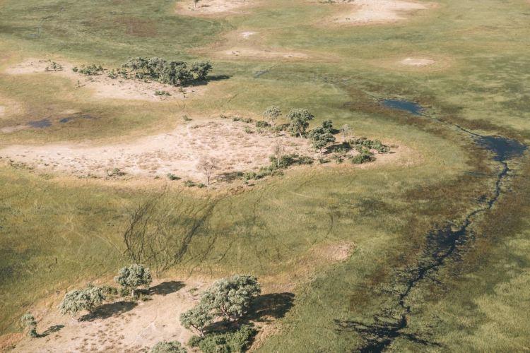 Okavango River2