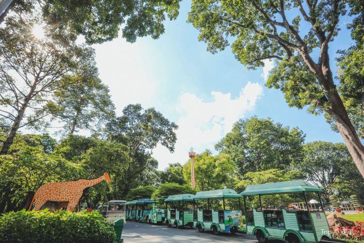 Saigon Zoo And Botanical Garden1