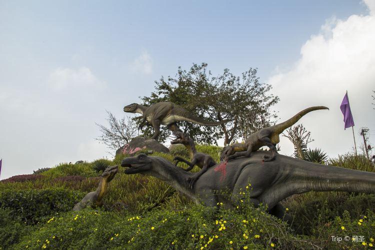 쯔궁 공룡 박물관2