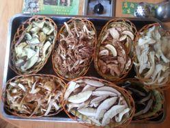 翠竹園野生菌火鍋店