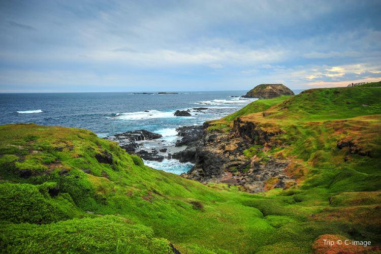 Cape Woolamai1