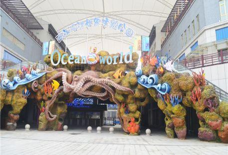린이 해양세계테마파크