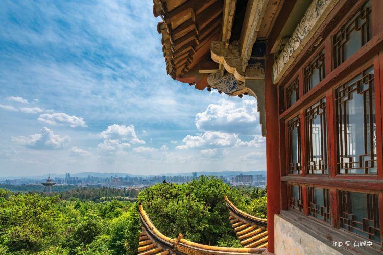 Jindian Park4