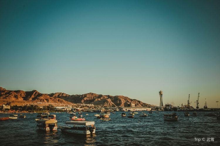 Gulf of Aqaba1