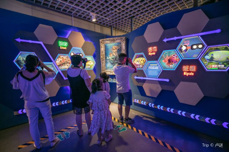 Bund Sightseeing Tunnel AR Experience Hall1