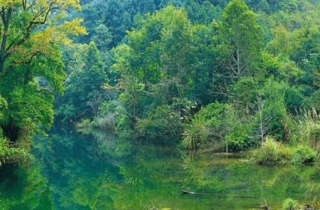 Guangdong Chebaling National Nature Reserves