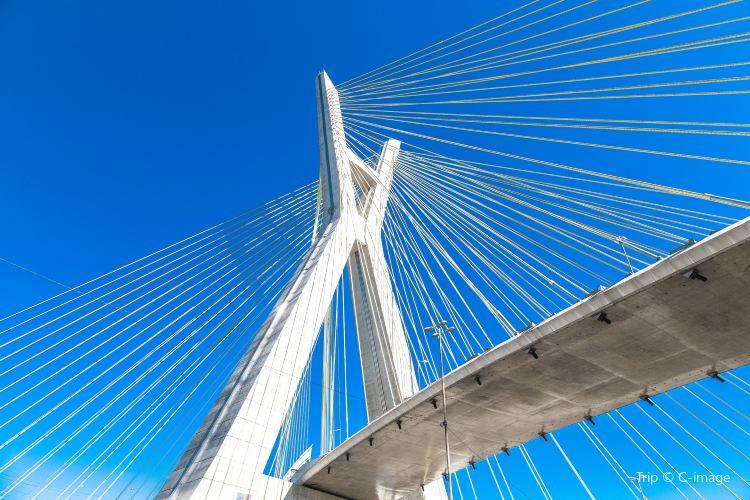奧克塔維奧·弗裡亞斯·德奧利韋拉大橋2
