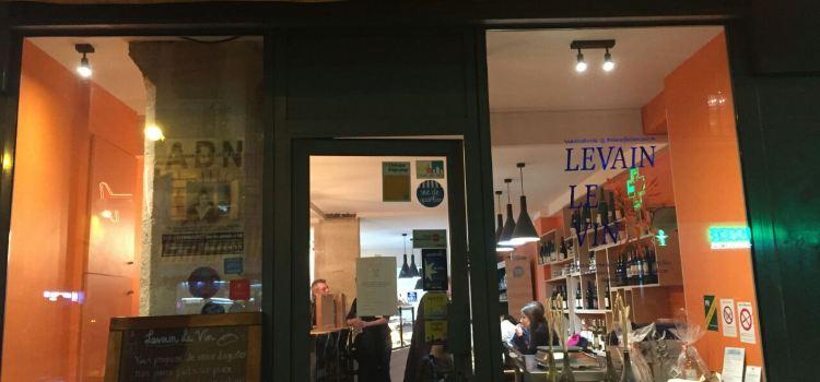 Levain Le Vin