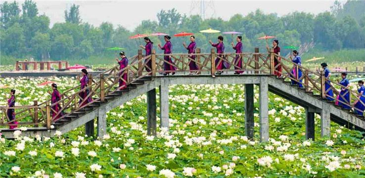 Jiaogang Lake National Wetland Park1