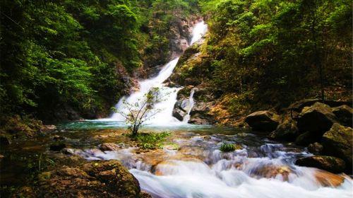 九龍江國家森林公園