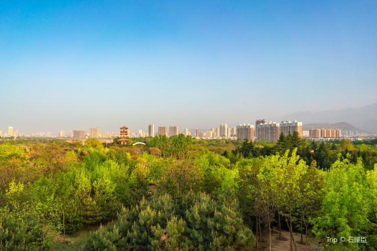 Baoji Botanical Garden1
