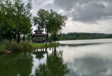 Chengxi Park