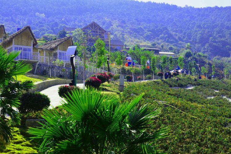 Huawu Renjian Scenic Area in Panzhihua1