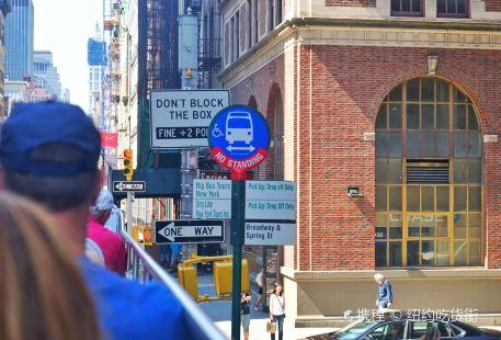 Gray Line New York Sightseeing