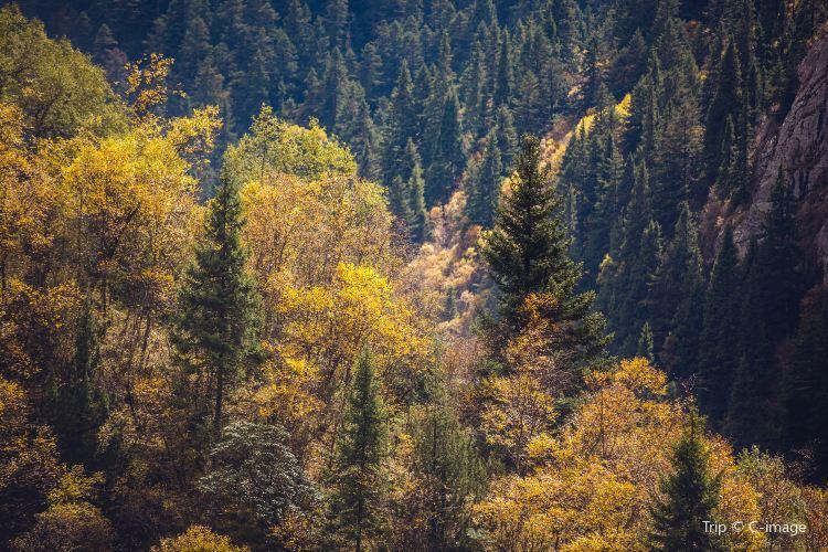 大峪溝風景區3