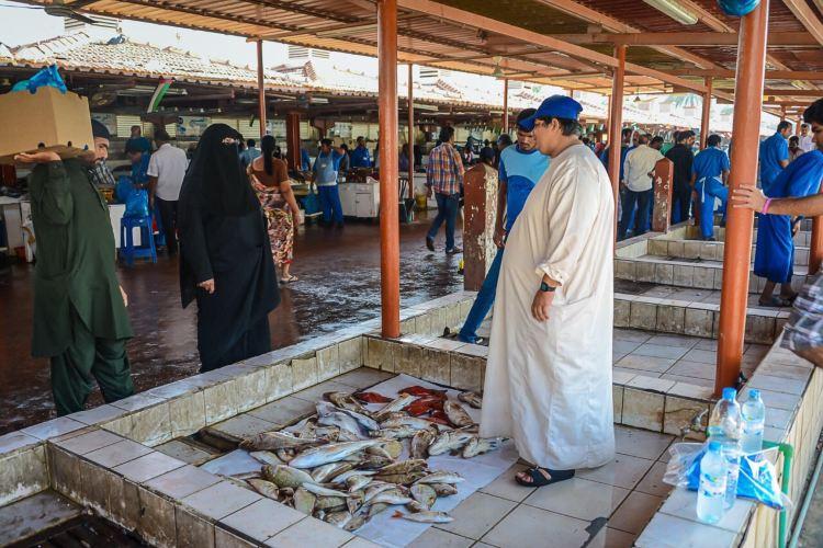 Dubai Fish Market2