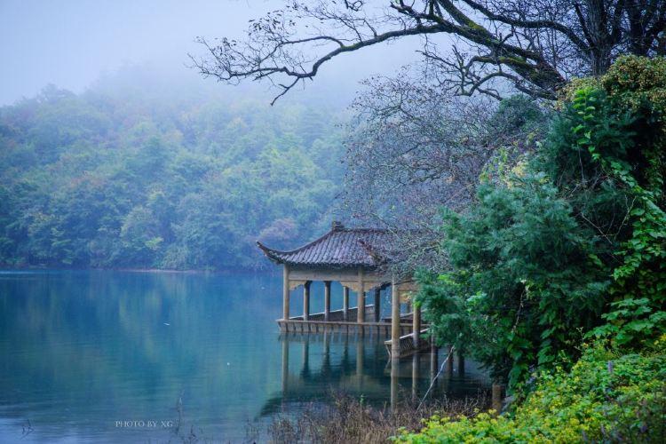 Wenxiantianchiguojia Forest Park2