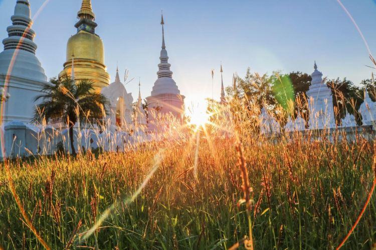 Wat Suan Dok4