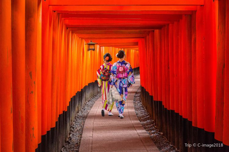Fushimi Inari Shrine2