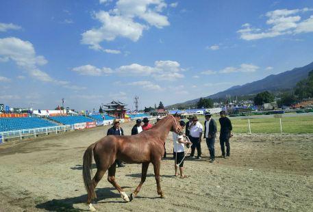 Sanyuejie Racecourse