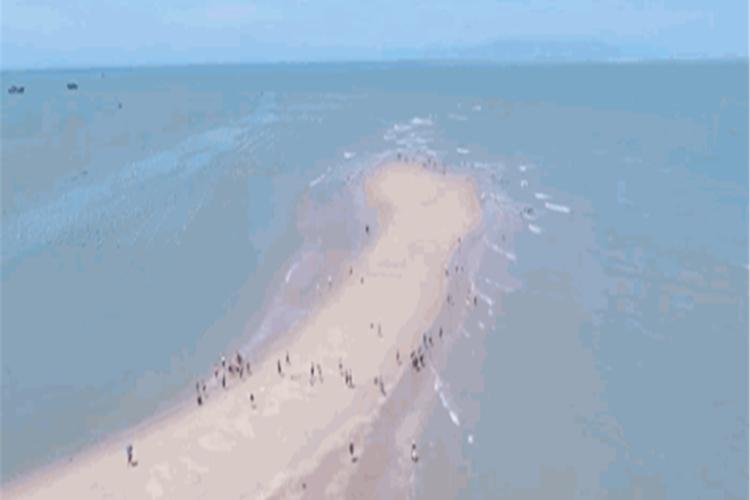 魚骨沙洲1