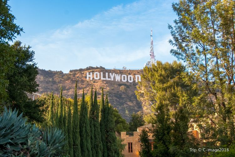 Hollywood Sign4