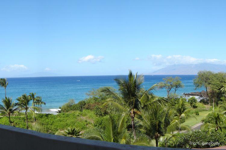 Maui To Go