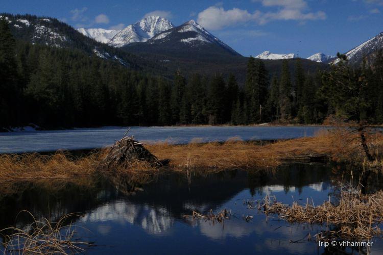 Beaver Lake3