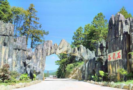 Stone Dragon Valley Forest Amusement Park