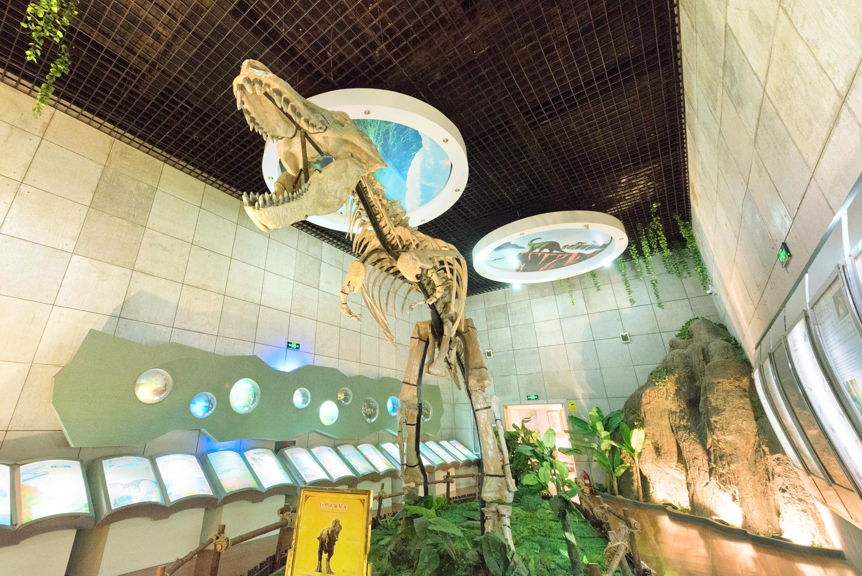 Zhucheng City Dinosaur Park