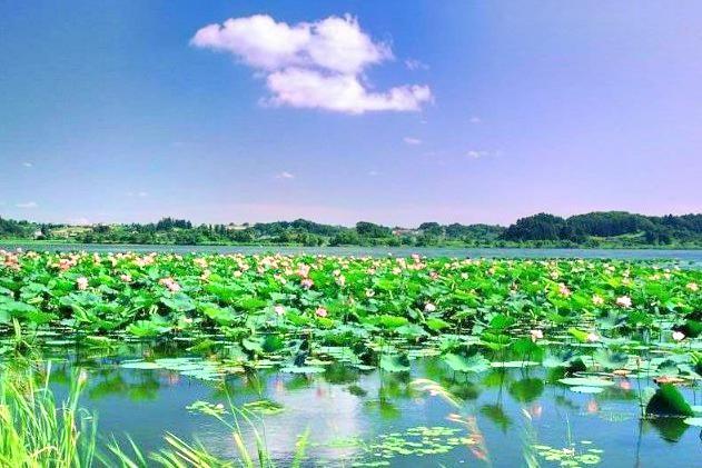 Weishan Lake