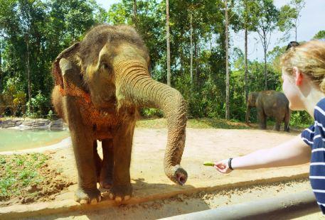 SAFARI野生動物園