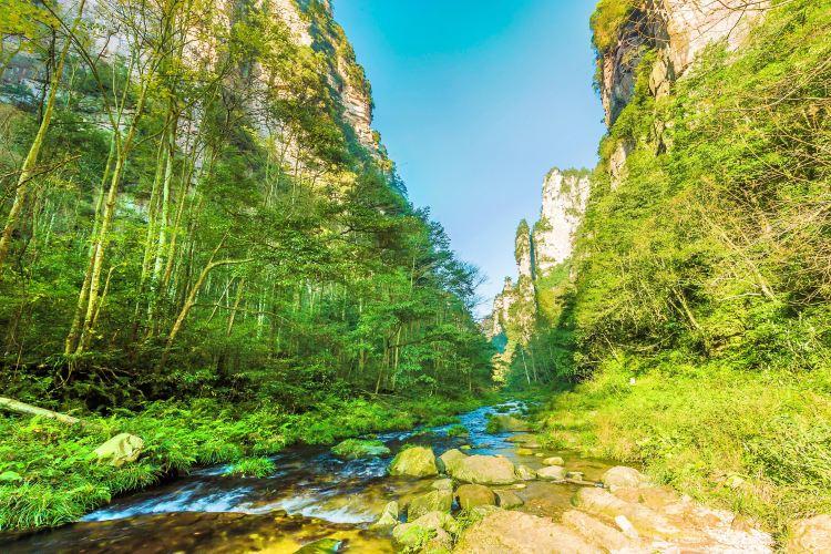 Golden Whip Stream (Jinbian Stream)
