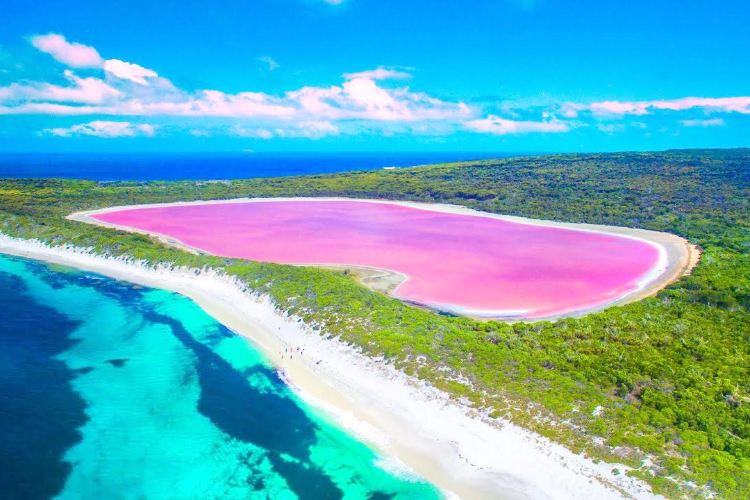 Lake Hillier travel guidebook –must visit attractions in Shire of Esperance  – Lake Hillier nearby recommendation – Trip.com