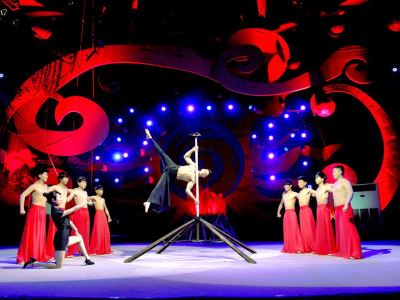 Wuqiao Acrobatics World