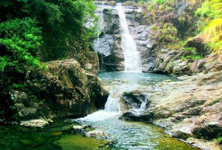 Wuxingtan Forest Park