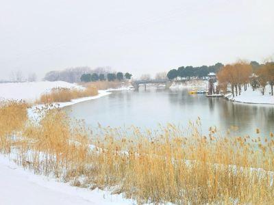 Binjiang Wetland Park