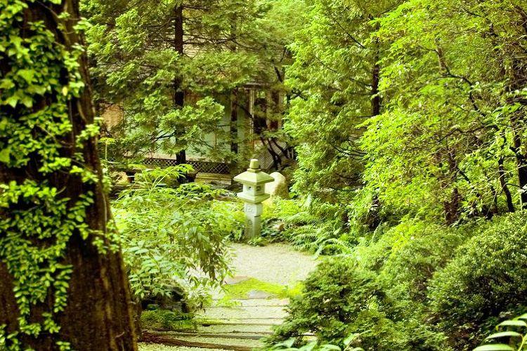 Mizumoto Japanese Stroll Garden1