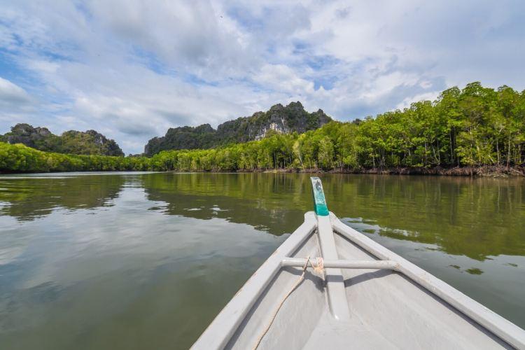 Mangrove Ecological Reserve2