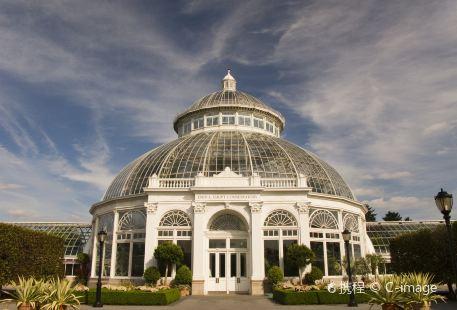 紐約植物園