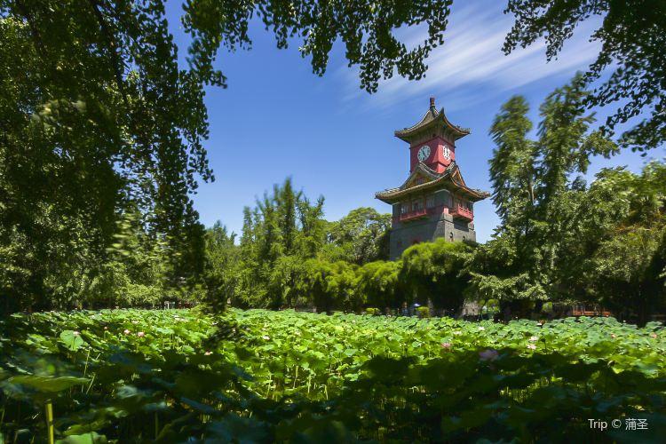 쓰촨 대학교3