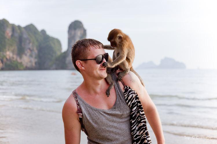 猴子海灘2